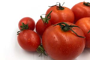 【3】今週のプロ野菜ニュース(8/19週)のイメージ